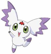 Image of culumon.jpg