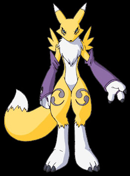 Image of renamon.jpg